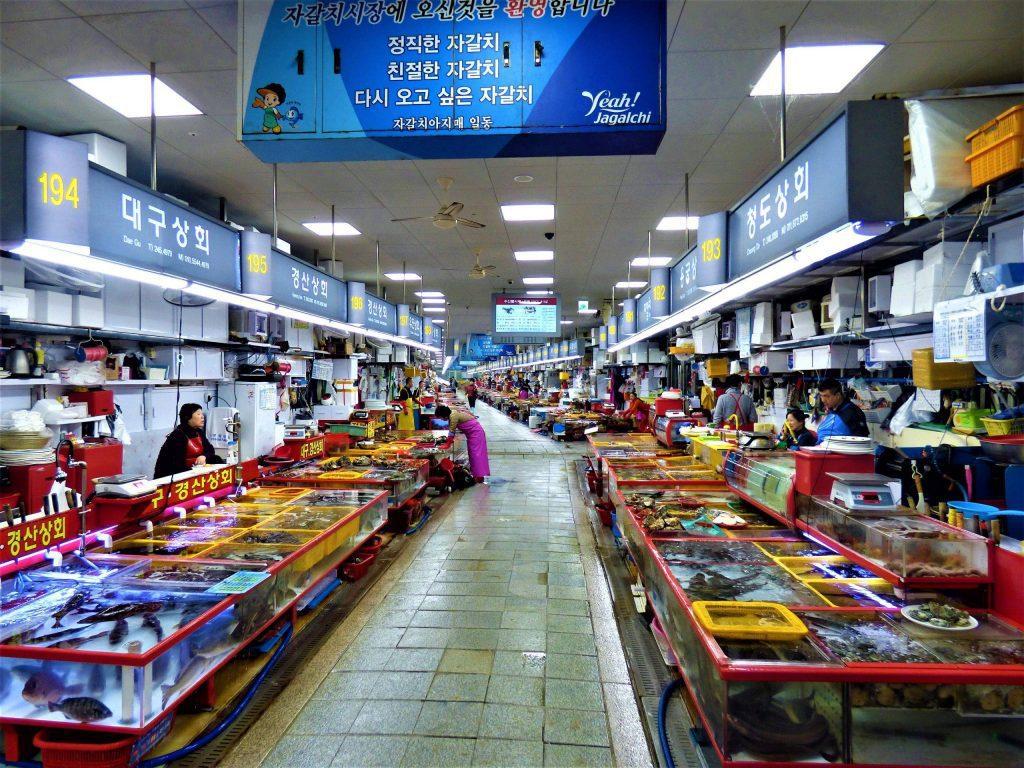 Jagalchi Market busan itinerary