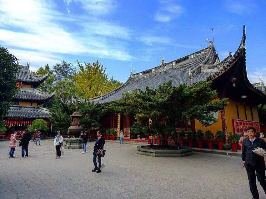 longhua temple shanghai highlights